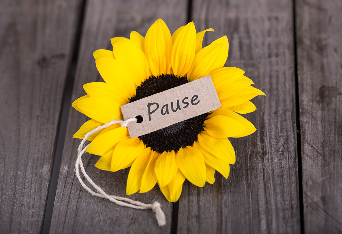 Escape the Stress Cycle