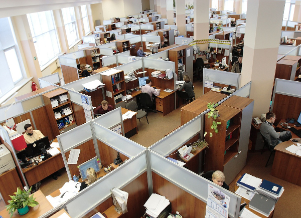 cubicles at work