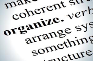 concept organization natural ability