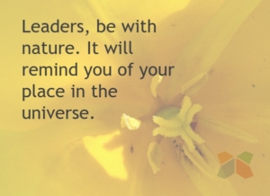 leadership tips nature